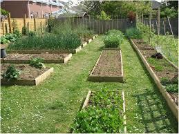 backyards wondrous ideas for backyard gardens backyard images