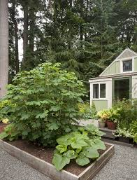 nancy heckler makes new indianola garden her own the seattle times