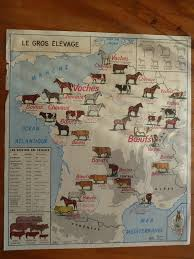 World Map 1950 Vintage French Posters Botany Animals Anatomy Old World Maps From
