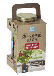 Self Water Pot Amazon Com Back To The Roots Self Watering Planter Tomato