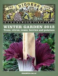 winter garden by the diggers club issuu