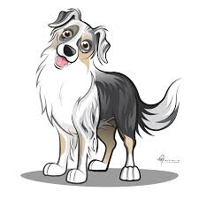 australian shepherd embroidery designs australian shepherd smart working dog australian shepherd