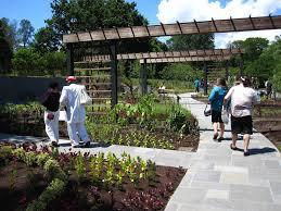 herb garden brooklyn botanic garden