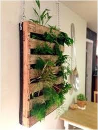 Indoor Hanging Garden Ideas Indoor Vertical Garden Apartment Indoor Vertical Garden Indoor
