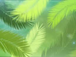 palm branches for palm sunday palm sunday branches imagevine worshiphouse media