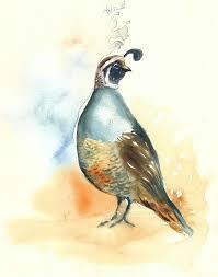 california quail by dimdiart tattoos pinterest quails