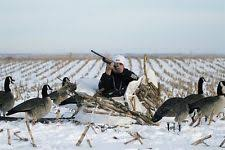 Layout Hunting Blinds Avery Greenhead Gear Ghg Ground Force Layout Hunting Blind Snow
