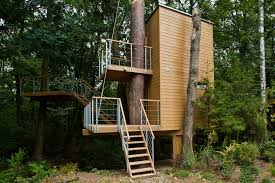 12 architects who build houses around trees instead of cutting them