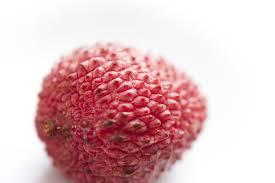 lychee fruit image of fresh tropical litchi freebie photography