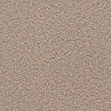 home decorators collection carpet sample expeditious i color