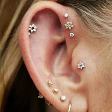 cartilage earing the of adornment how to wear earrings cartilage