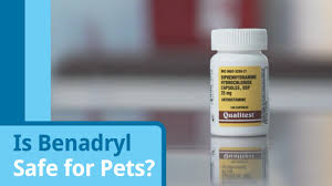can i give my dog benadryl and if so how much petmd