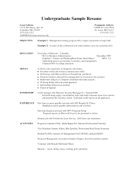 Example Resume For College Students by 100 Sample Resume For Graduate Student Sample Resume For