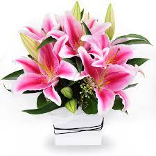 stargazer lilies stargazer lilies box flower delivery philippines
