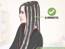 grey streaks in hair 4 ways to put a streak of color in your hair wikihow