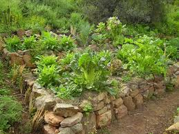 Rock Vegetable Garden Vegetable Garden Raised Bed With Stacked Rock Wall Something