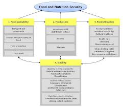 ijerph free full text the role of food and nutrition system