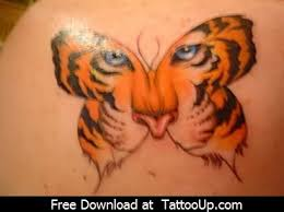tiger butterfly proverbs 16 design freelance