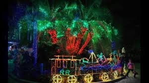 garvan gardens christmas lights 2017 holiday lights in the gardens florida botanical gardens youtube