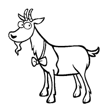 goat wearing bow tie coloring pages color luna