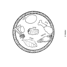 seder plate craft for seder plate clipart clipart collection hebrew roots passover