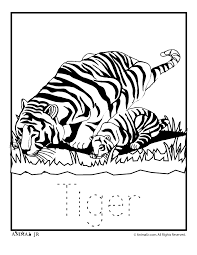 zoo animal coloring pages bestofcoloring