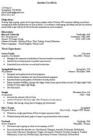 resume exles for objective section cv objective section europe tripsleep co