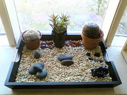 impressive indoor rock garden dips pinterest dips