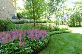 Retaining Wall Garden Bed by Large Astilbe Bed With Outcropping Retaining Wall Van Zelst