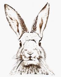 vintage rabbit best 25 rabbit clipart ideas on easter bunny template