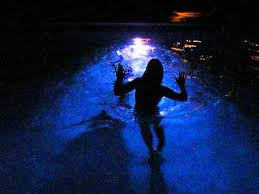 Pool At Night Girls Night Swimming In Lighted Pool Youtube