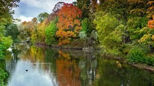 15 train rides spotting fall foliage south