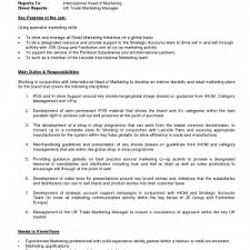 free ceo resume samples cover letter personable sample cv ceo ceo