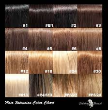 Types Of Hair Colour by Names Of Hair Color Styles Hairsstyles Co