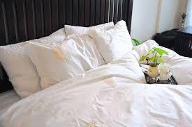 White Queen Duvet Bedroom White Duvet Cover Queen Champagne Duvet Cover Pottery