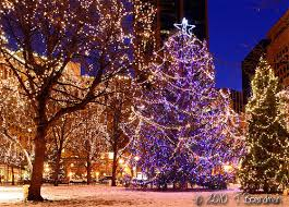 putting up christmas lights business twin cities holiday lights 2015 greenlaw realty