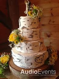 best 25 birch wedding cakes ideas on pinterest tree wedding