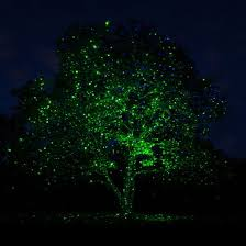 what do starshower lights look like in trees yahoo image search