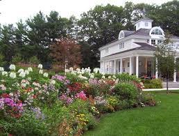 beautiful and mesmerizing landscape design for small front yard