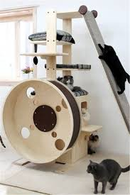 cat furniture for large cats cats cat trees but you need
