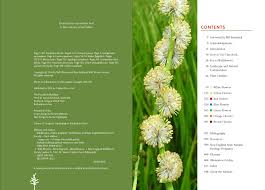 native plants of the pacific northwest wildflowers of the pacific northwest workman publishing