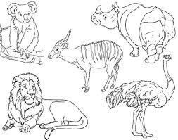29 safari animals images animal coloring pages