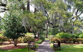 Wilmington Nc Botanical Gardens by File Gardens And Benches At Orton Plantation Brunswick County
