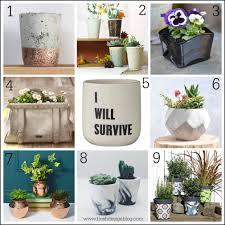 unusual pots for plants home design ideas