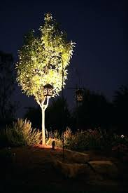 Landscape Up Lights Landscape Up Lighting Outdoor Up Lighting Medium Size Of Light