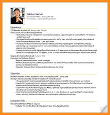 It Professional Resume Examples by 8 Resume Format For It Professionals Mystock Clerk