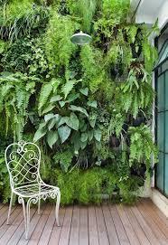 Vertical Gardens Miami - 861 best green walls vertical gardening roof gardens images on