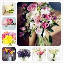 Fragrant Plants For Pots - fragrant indoor plants promotion shop for promotional fragrant