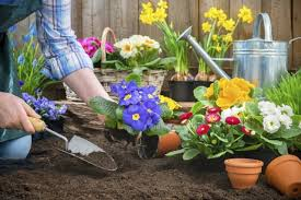 cura giardino attrezzi da giardino a batteria leggeri e facili da utilizzare