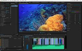 final cut pro vs gopro studio editing tips for underwater videographers using gopro
